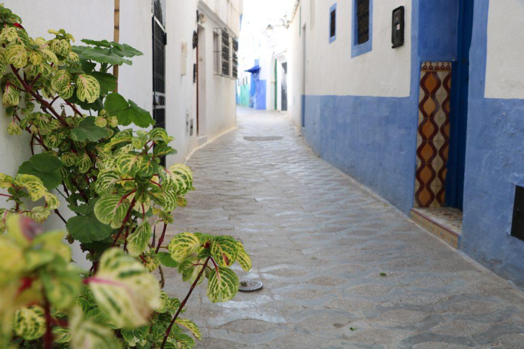 Marokko Merkmale Medina