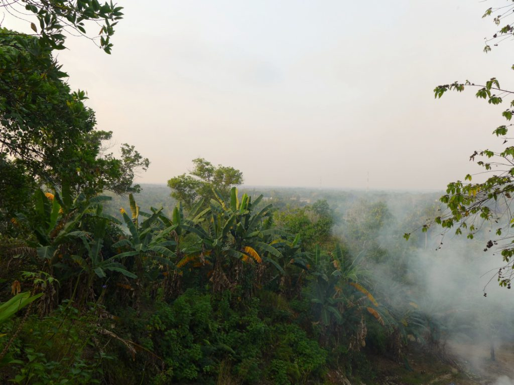 Typisch Indonesien Klima Tropen Brand