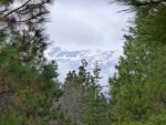 Ausflug von San francisco Shasta Trinity National Forest