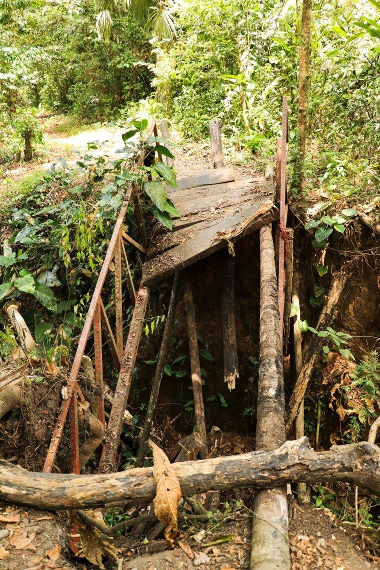 Soberania Nationalpark Camino de Plantación Panama