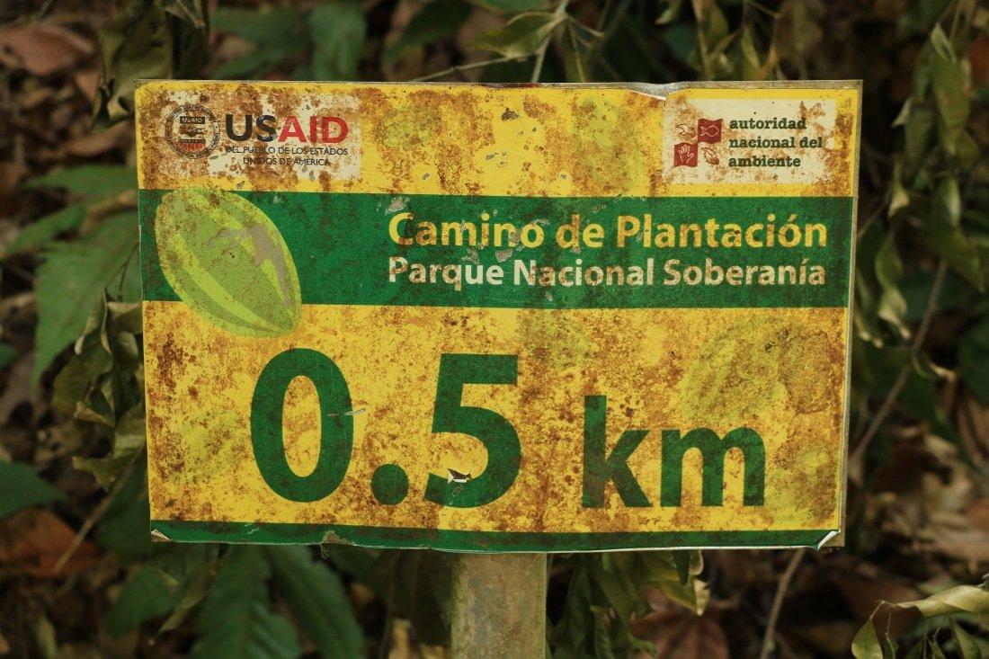 Soberania Nationalpark Panama Camino de Plantación