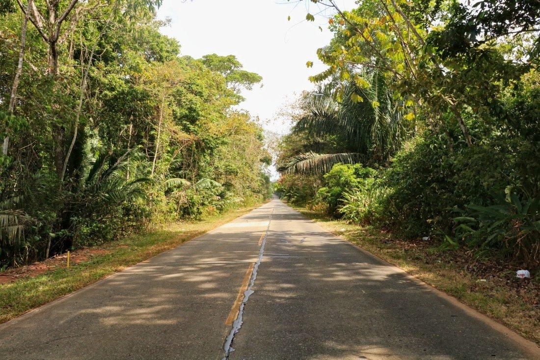 Soberania Nationalpark Panama Anreise
