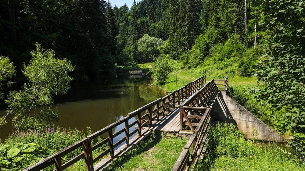 Tara Nationalpark Jarevac Staudamm